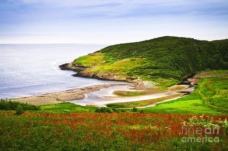 Atlantic Coast In Newfoundland Photograph
