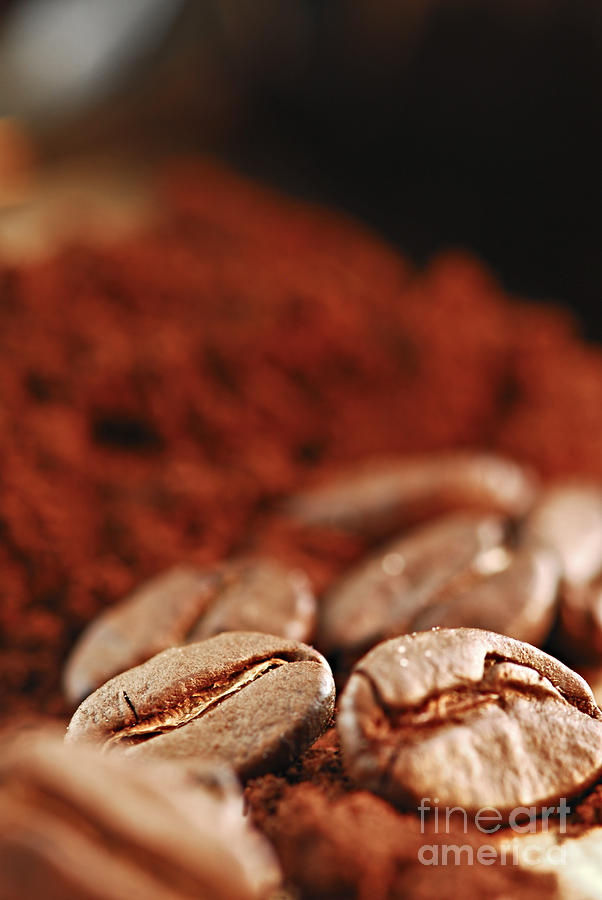 Coffee Beans And Ground Coffee Photograph  - Coffee Beans And Ground Coffee Fine Art Print