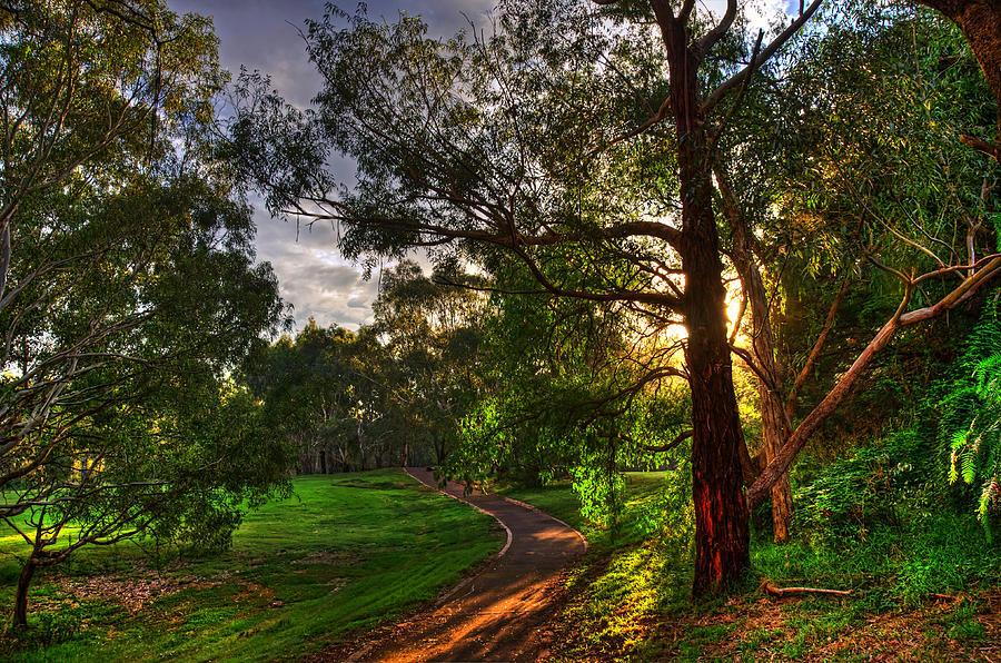 Photograph - Rural Australia by Imagevixen Photography