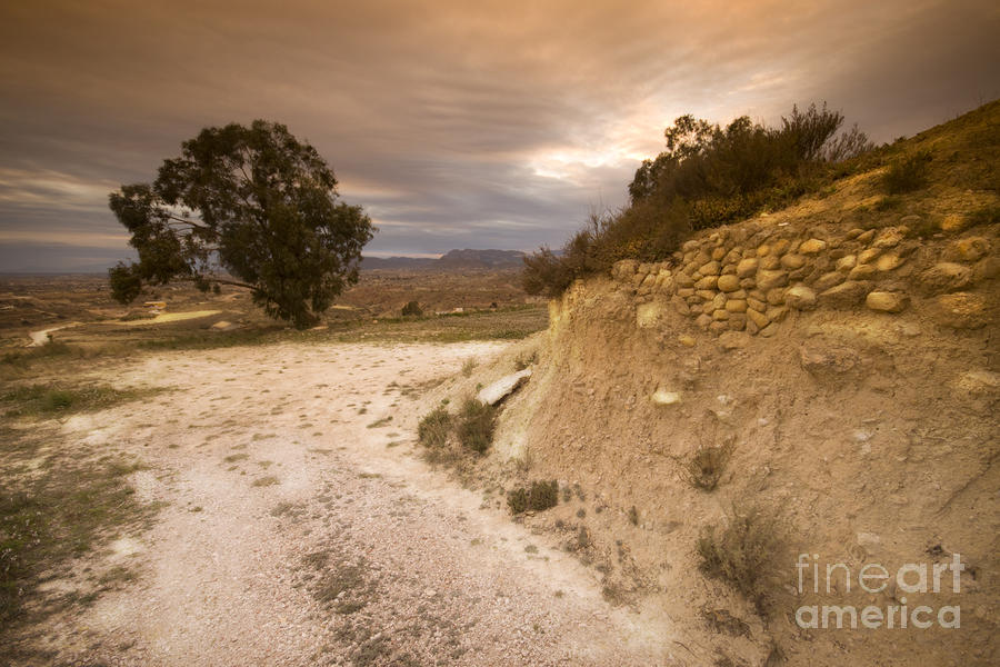Spanish Landscape Photograph  - Spanish Landscape Fine Art Print