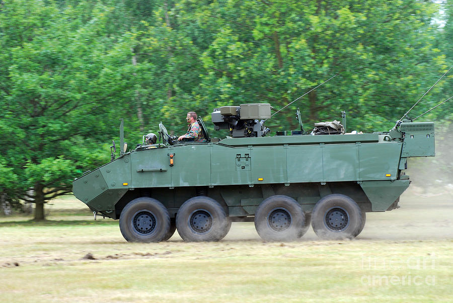 The Piranha IIic Of The Belgian Army Photograph