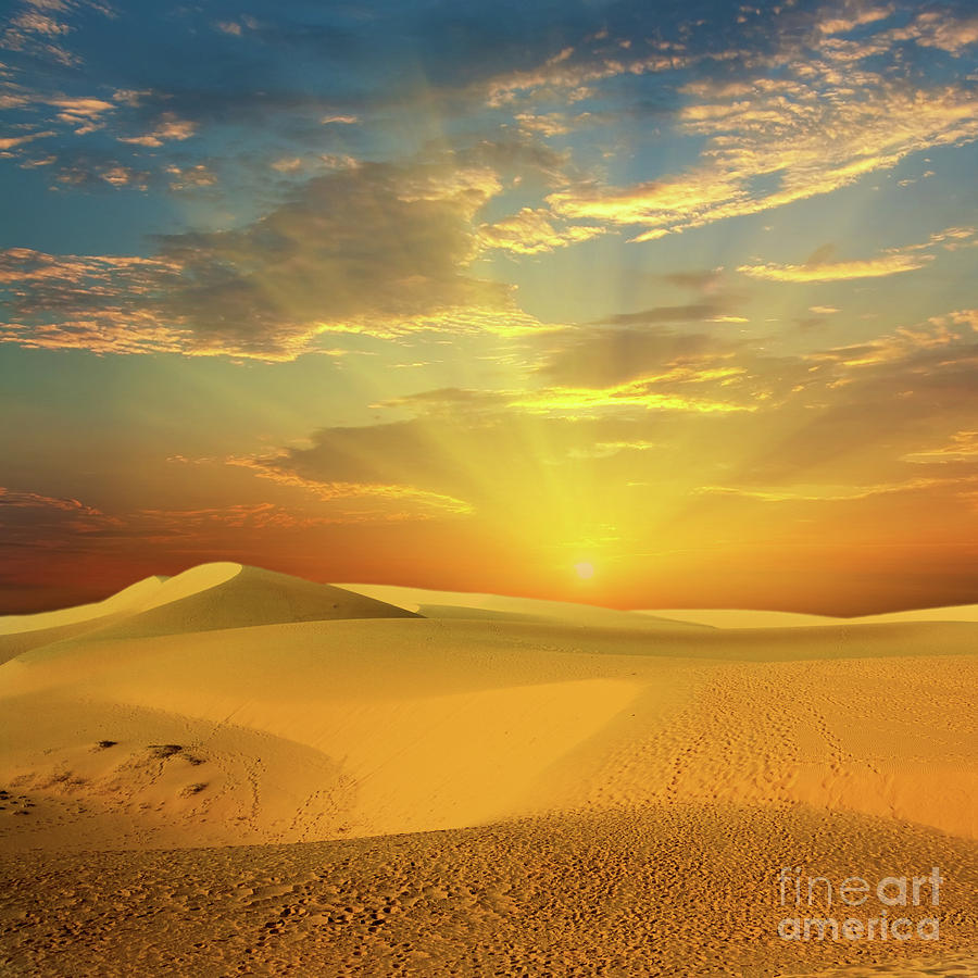 Desert Photograph - Desert by MotHaiBaPhoto Prints