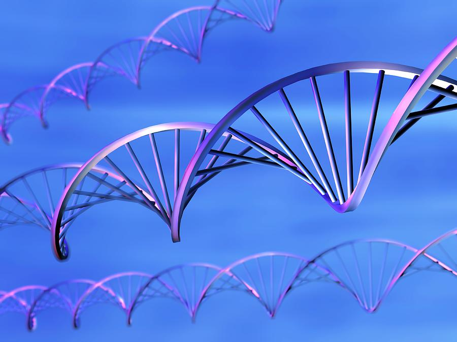 Dna Molecules, Computer Artwork Photograph