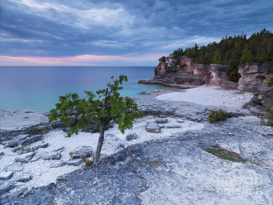Georgian Bay Cliffs At Sunset Photograph  - Georgian Bay Cliffs At Sunset Fine Art Print