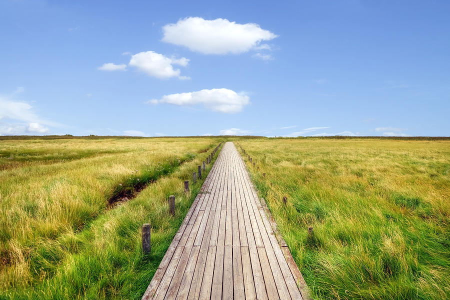 Boardwalk Photograph - Kampen - Sylt by Joana Kruse