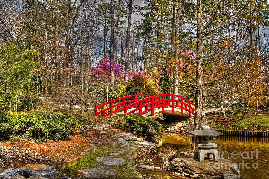 A Bridge To Spring Photograph