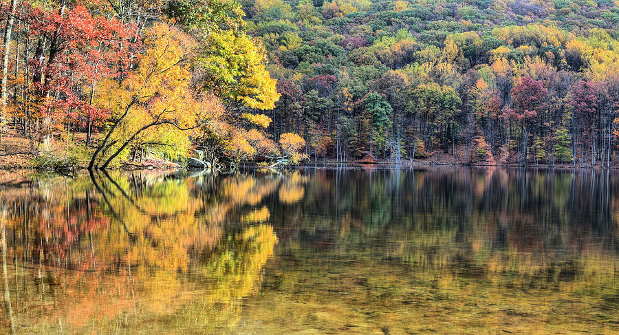 Cunningham Falls Photograph - A Bright Spot by JC Findley