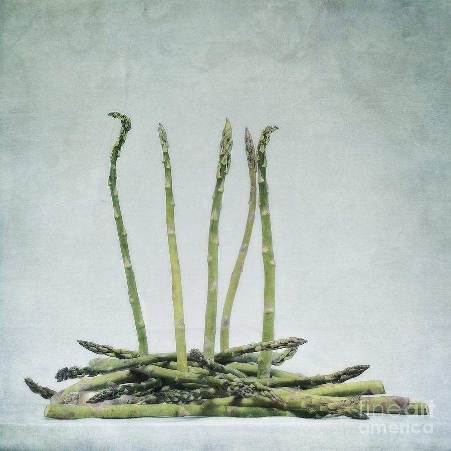 A Bunch Of Asparagus Photograph