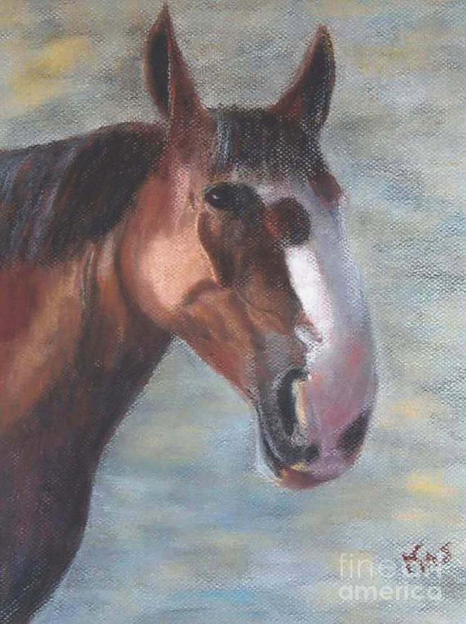 A California Clydesdale Pastel