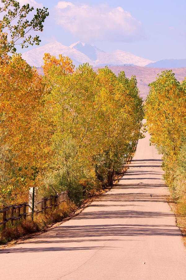 A Colorful Country Road Rocky Mountain Autumn View  Photograph