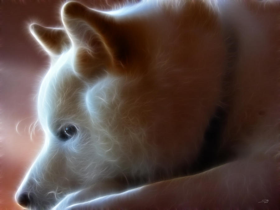 A Dogs Life Digital Art  - A Dogs Life Fine Art Print