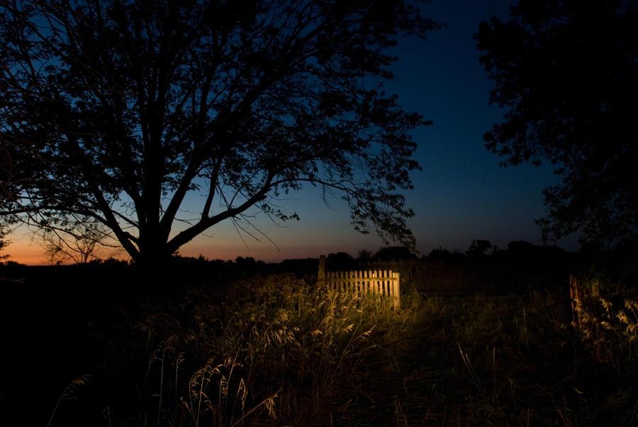 A Farm Near Princeton, Nebraska Photograph