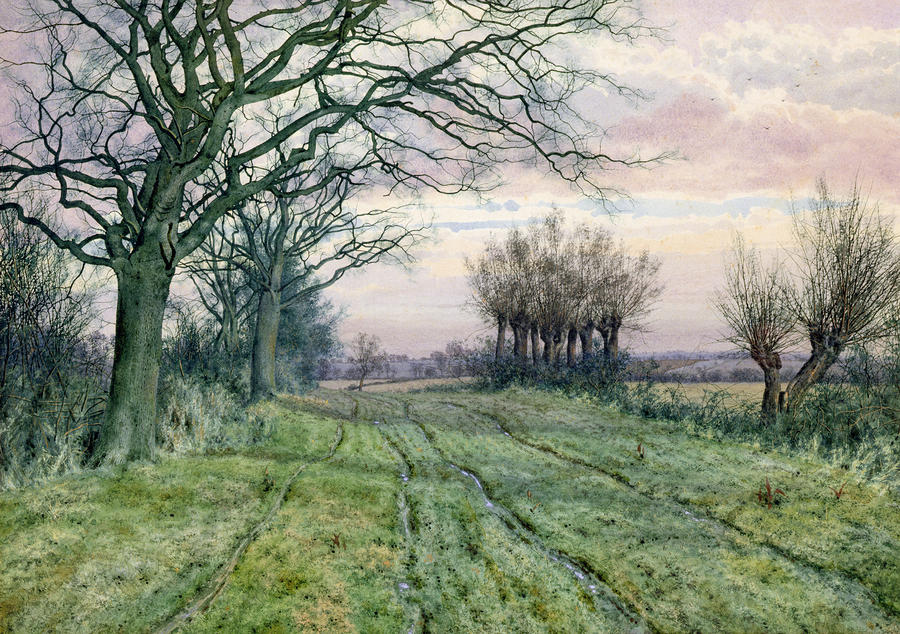 A Fenland Lane With Pollarded Willows Painting
