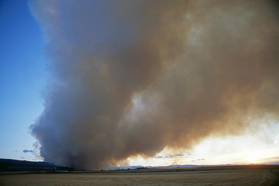 A Forest Fire Burns In The Gallatin Photograph