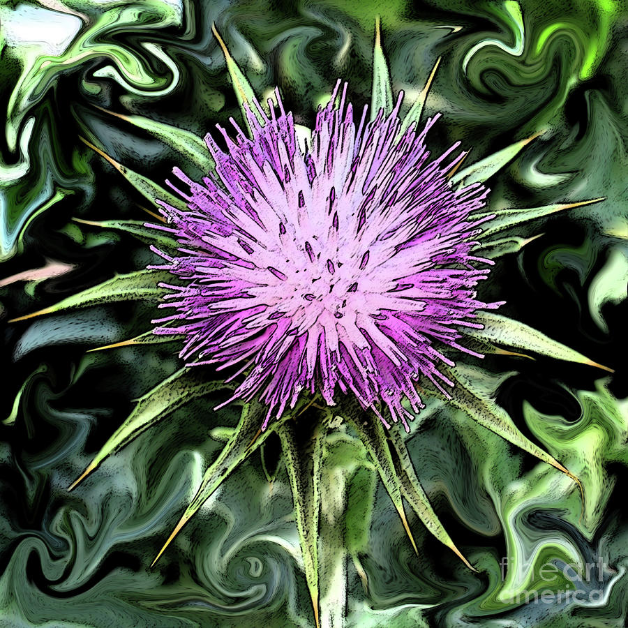 A Grand Thistle Photograph  - A Grand Thistle Fine Art Print
