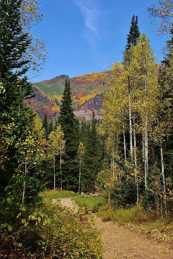 A Hike Through The Mountains Photograph