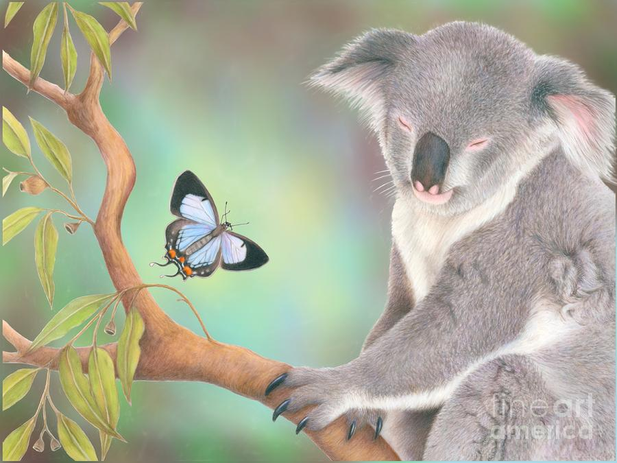 A Kiss For Koala Drawing  - A Kiss For Koala Fine Art Print