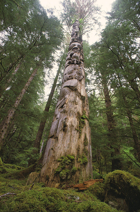 A Large Totem Pole Stands Amid Tall Photograph