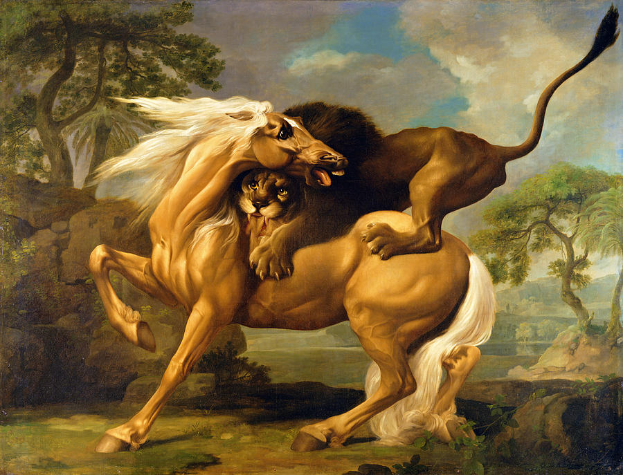 A Lion Attacking A Horse Painting  - A Lion Attacking A Horse Fine Art Print