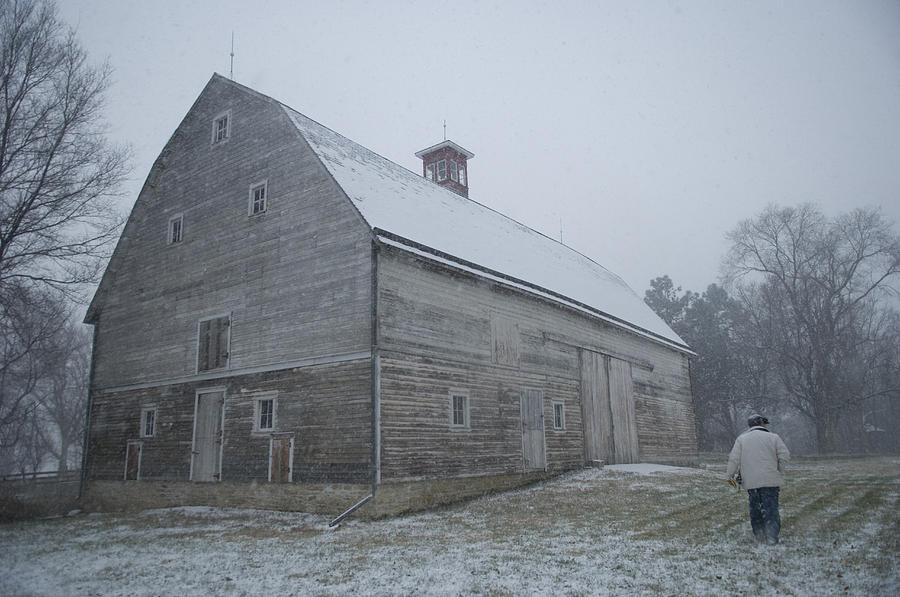 A Man In The Snow At Waveland Farm Photograph  - A Man In The Snow At Waveland Farm Fine Art Print