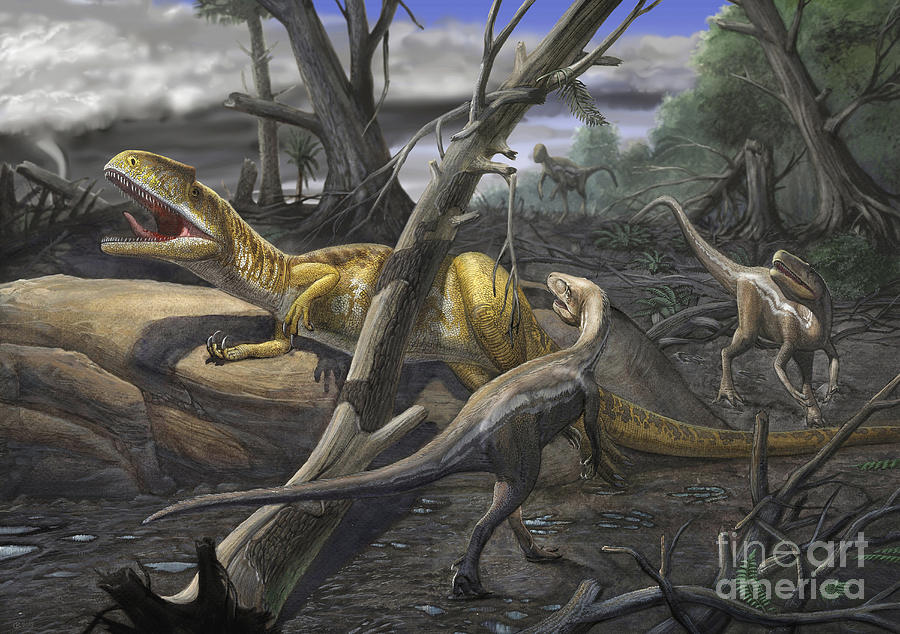 A Neovenator Salerii Is Approached Digital Art