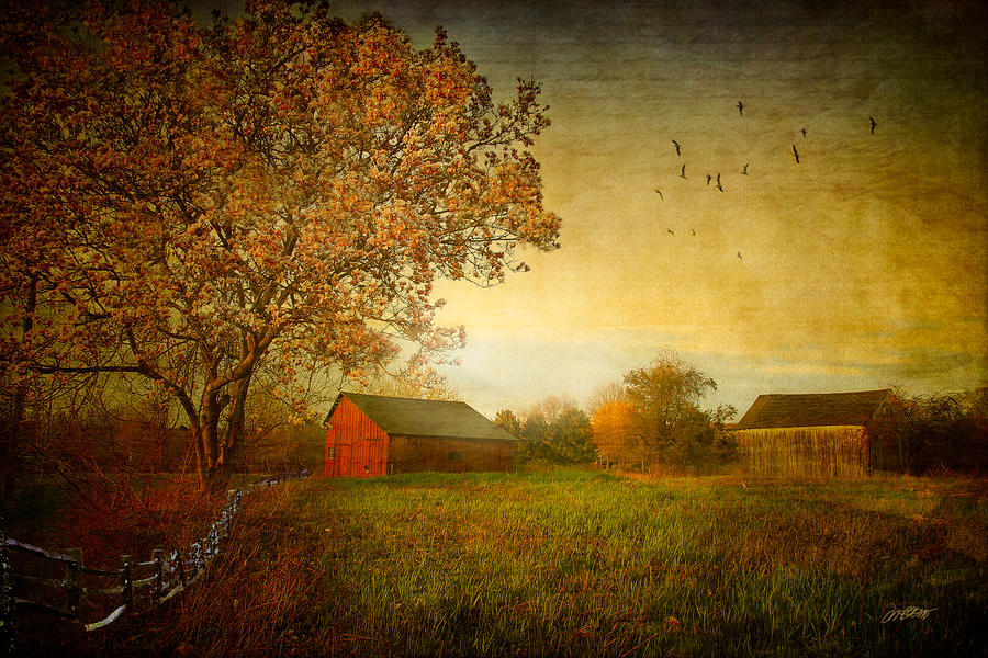 A New Dawn Digital Art