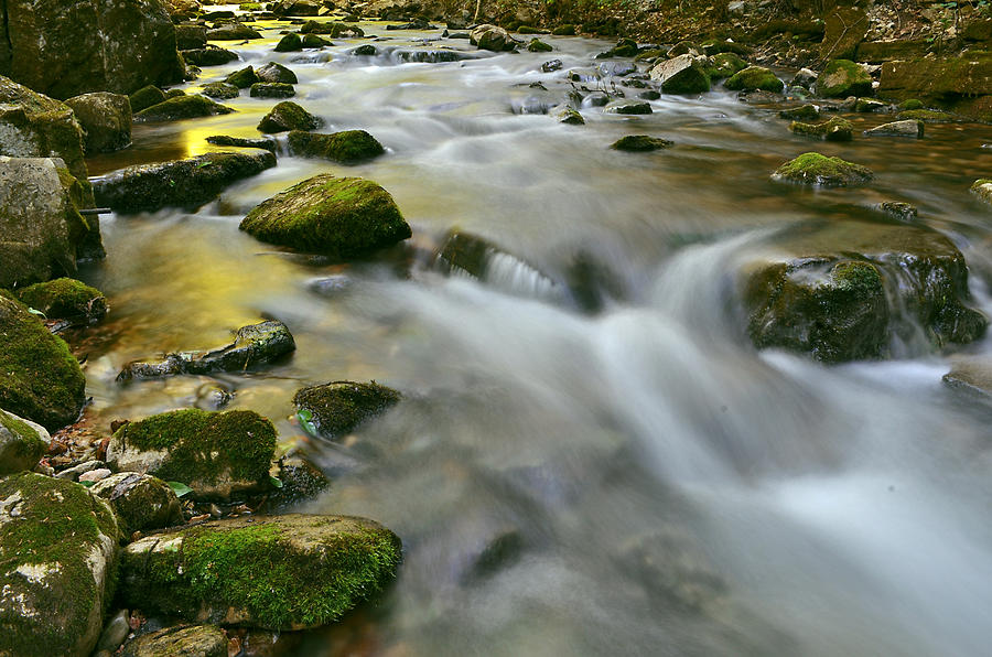 A Painted Stream Photograph  - A Painted Stream Fine Art Print