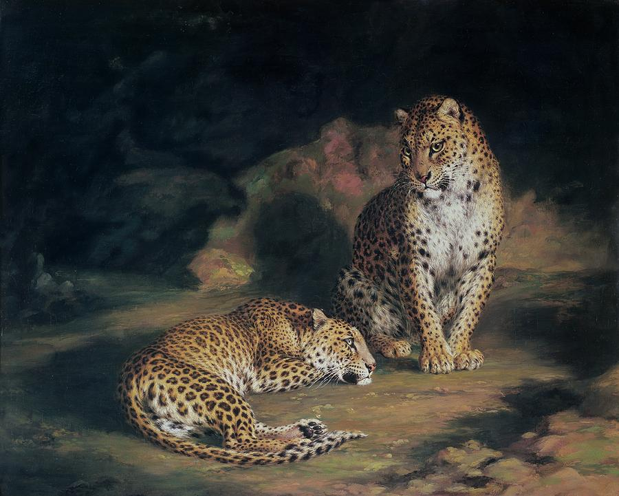 A Pair Of Leopards Painting  - A Pair Of Leopards Fine Art Print