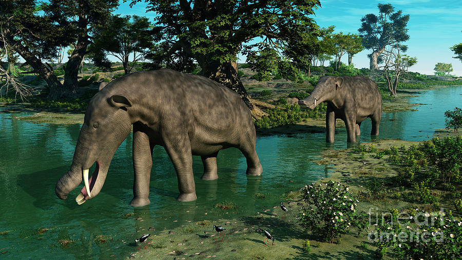 A Pair Of Platybelodon Grazing Digital Art