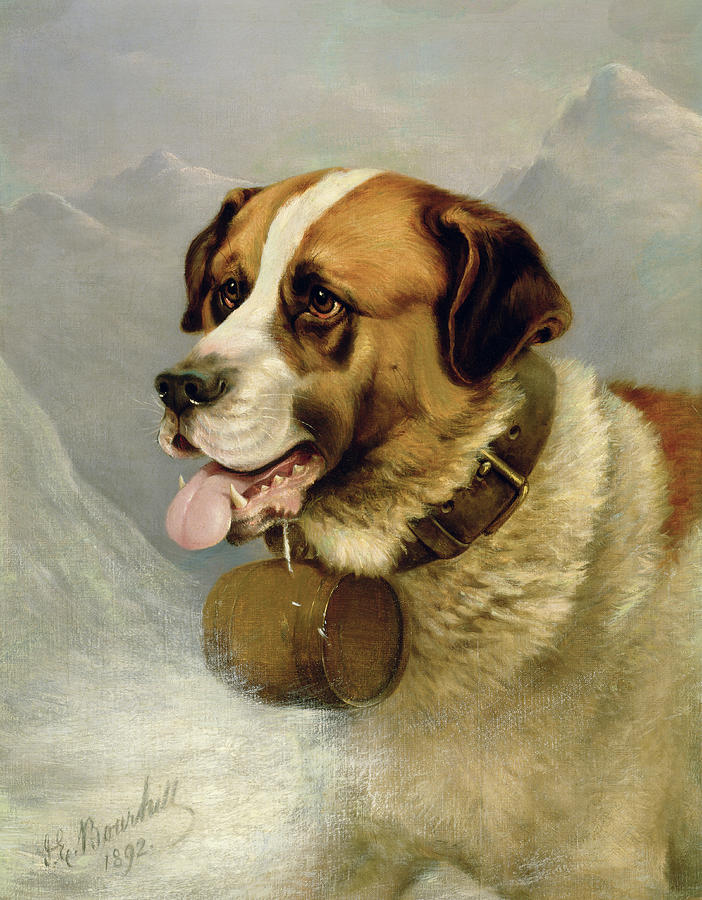 A Portrait Of A St. Bernard Painting
