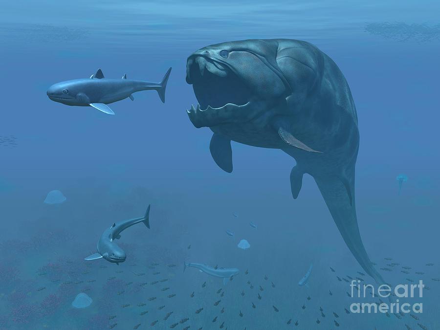 prehistoric shark found alive
