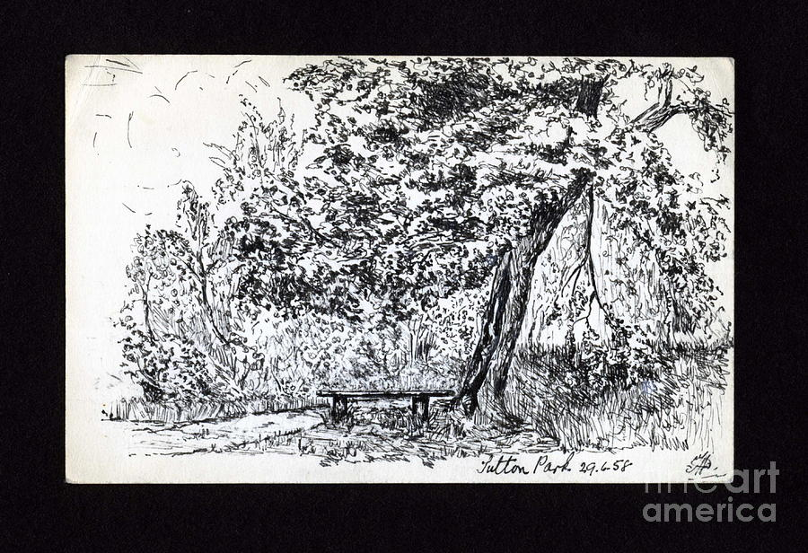 Park Scene Drawing - A Quiet Corner 1958 by John Chatterley