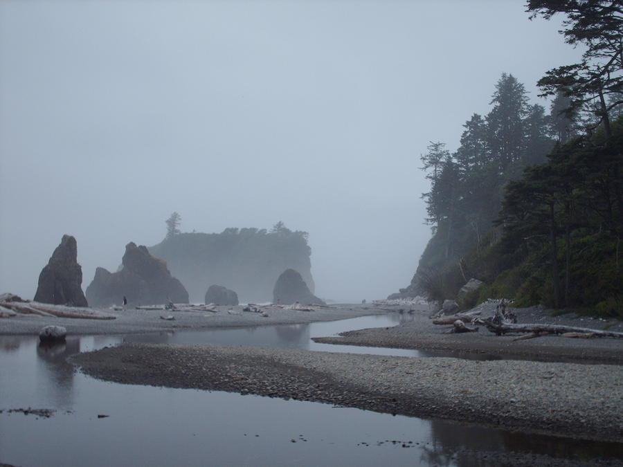 A Quiet Mist Photograph