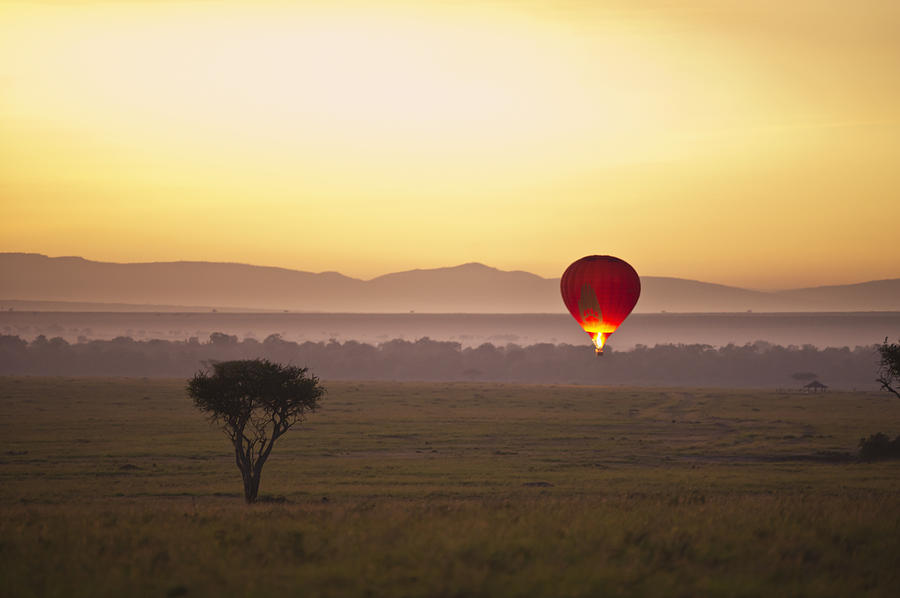 A Red Hot Air Balloon Takes Flight Photograph