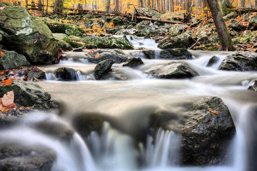 Cunningham Falls Photograph - A Rocky Road by JC Findley