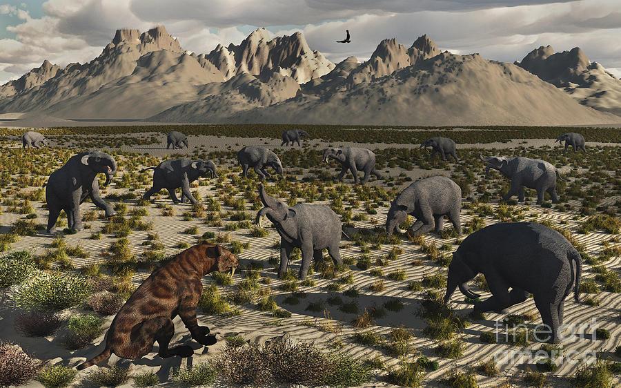A Sabre-toothed Tiger Stalks A Herd Digital Art