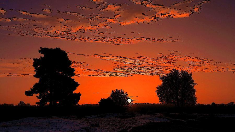 A Silent Sun Painting