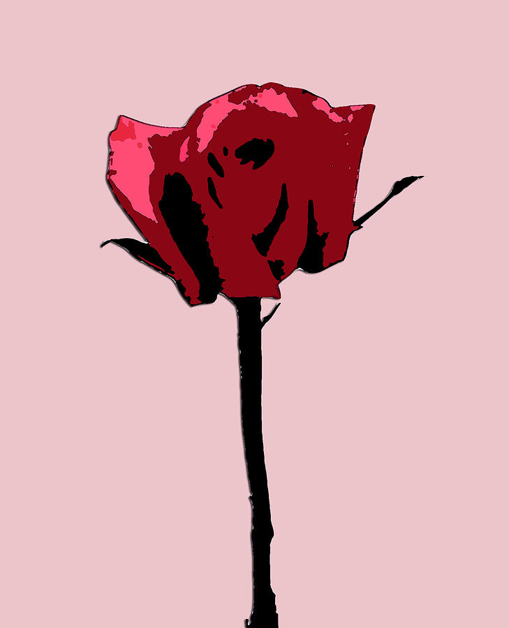 A Single Rose Digital Art  - A Single Rose Fine Art Print