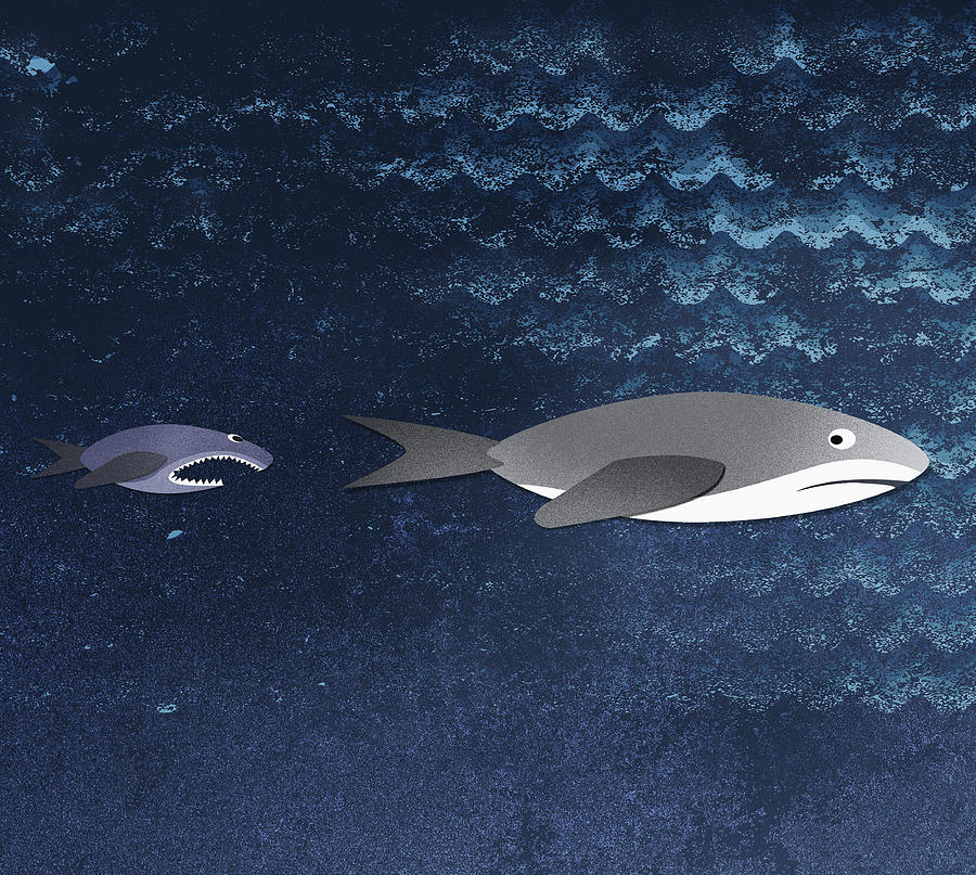 Horizontal Digital Art - A Small Fish Chasing A Shark by Jutta Kuss