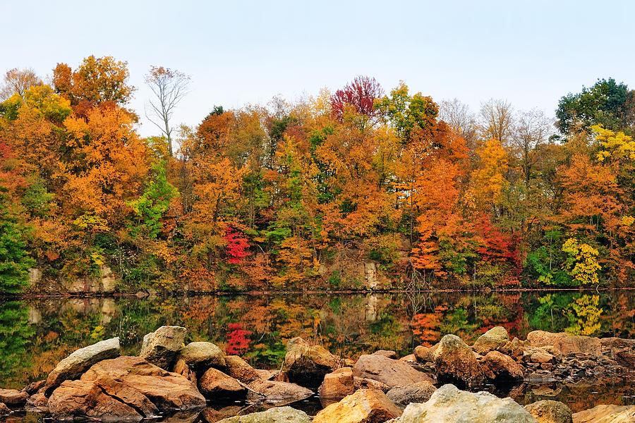 A Splash Of Color Photograph