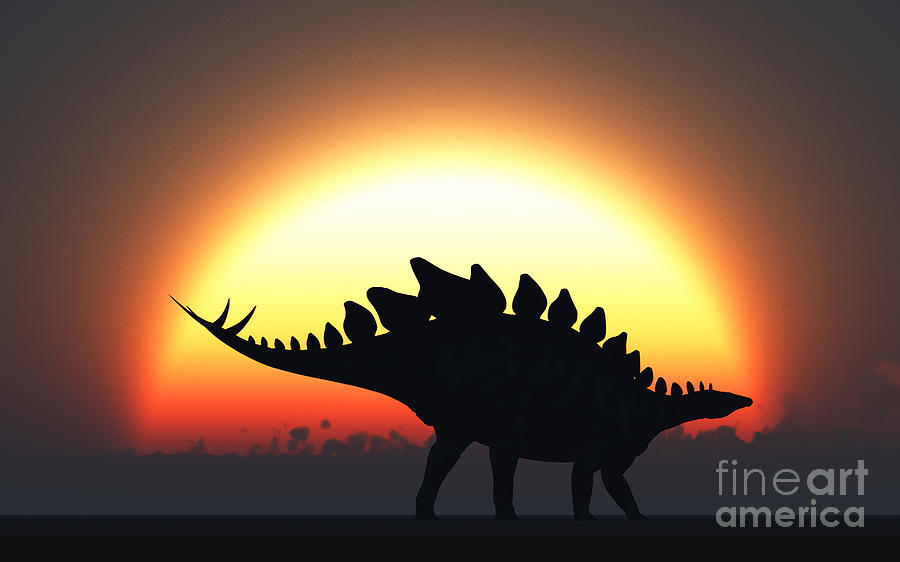 A Stegosaurus Silhouetted Digital Art