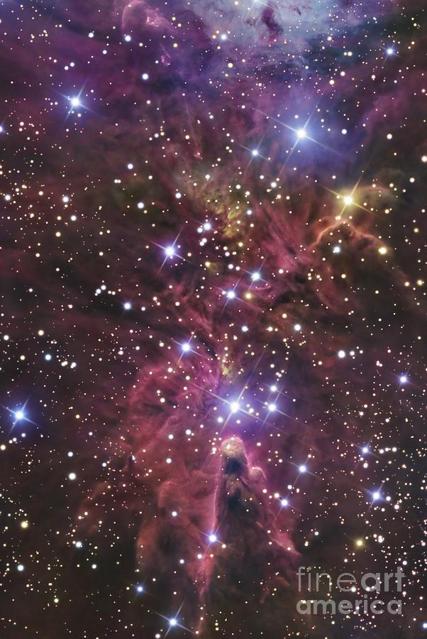 A Stellar Nursery Located Towards Photograph