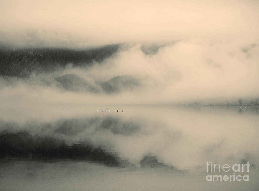A Study Of Clouds Photograph  - A Study Of Clouds Fine Art Print