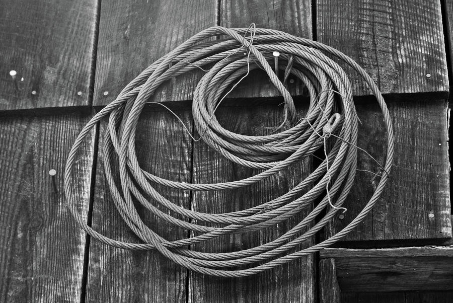 A Study Of Wire In Gray Photograph  - A Study Of Wire In Gray Fine Art Print