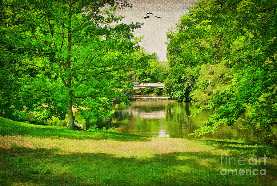 A Summers Day Photograph  - A Summers Day Fine Art Print