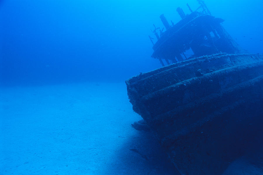 A sunken tug boat lies on the sea floor photograph by for Ocean ground