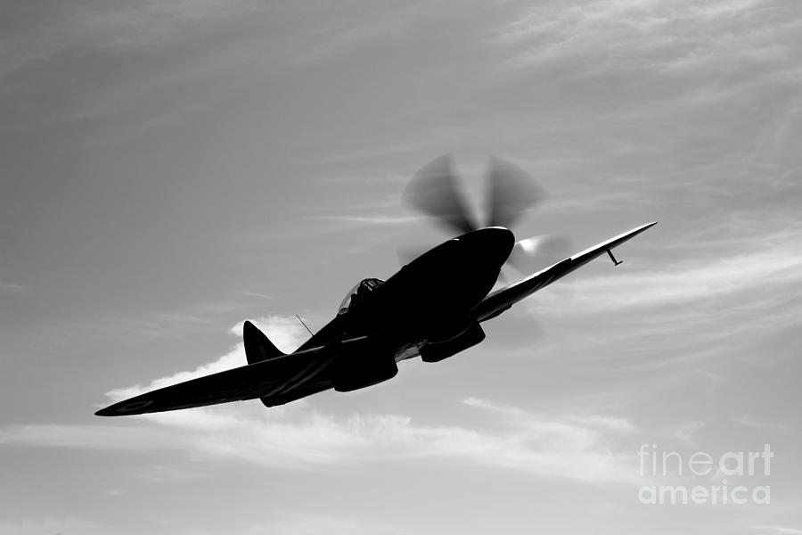 Black And White Photograph - A Supermarine Spitfire Mk-18 In Flight by Scott Germain