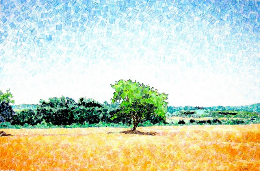 A Tree Near Siena Drawing  - A Tree Near Siena Fine Art Print