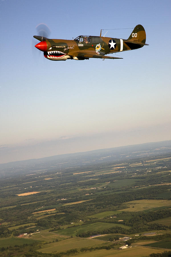 A Vintage World War II P-40n Fighter Photograph  - A Vintage World War II P-40n Fighter Fine Art Print
