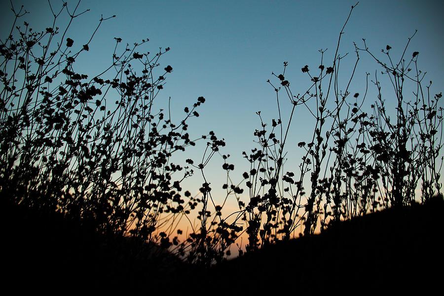 A West Coast Autumn Photograph